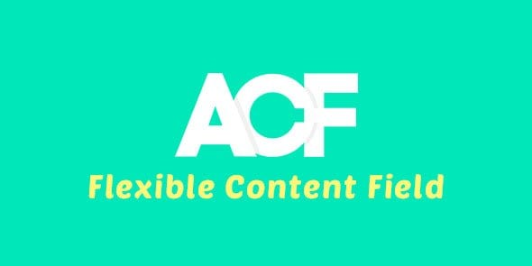 Advanced Custom Fields (ACF) Flexible Content Field