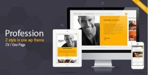 Profession – One Page CV Resume Theme