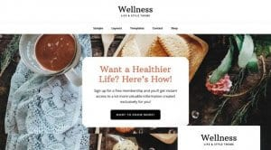 StudioPress Wellness Pro Theme