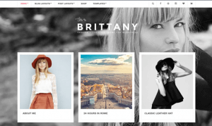CSS Igniter Brittany WordPress Theme