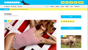 CSS Igniter Doberman WordPress Theme