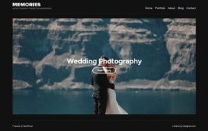 CSS Igniter Memories WordPress Theme