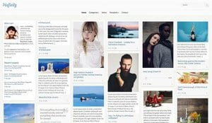 CSS Igniter Pinfinity WordPress Theme