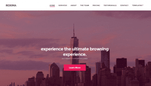 CSS Igniter Roxima WordPress Theme