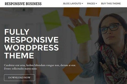 CyberChimps Responsive Business WordPress Theme